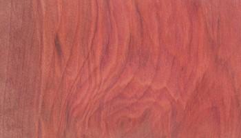 Wood Species - Faith Lumber