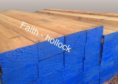 Hollock Wood